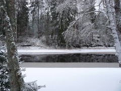temmesjoki_21.11._2