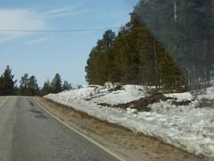 Kevät 2005 4