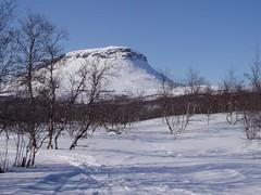 Kevät 2005 10