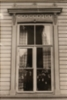 Pellisenhovin ikkuna