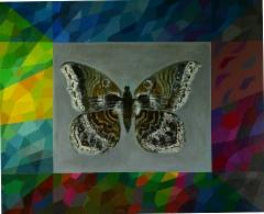 Perhosen huuto