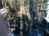 Arboristin näkymä tonttihakkuulle