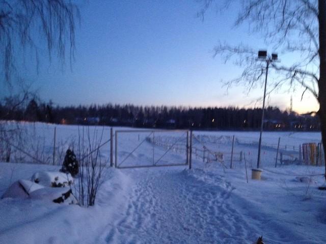 talvi6