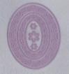 mfd044.jpg&width=140&height=250&id=33641&hash=c2da2662d7eab8ff7aee9f771dc45237