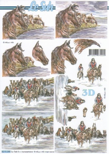 Hevoskuvat