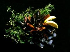 sinisimpukka