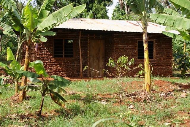 Paikallinen talo