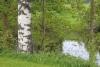 Ja Kyrönjoki virtaa...
