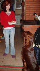 Annin tekemä kakku ellalle