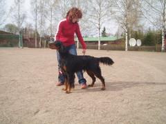 Aada ROP Elimäellä ryhmänäyttelyssä 6.5.2007