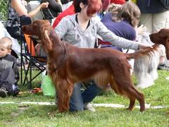 Ella Tuusulassa 30.6.2007