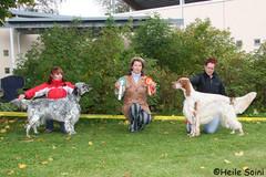 "Elvi VSP Hyvinkäällä 16.9.2007. ROP koira Silver Fog Vals ""Coco"""