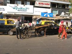"""Jään kuljettaja """"Ice wallah"""". Ice transporter """"Ice wallah"""".  Mumbai 13.1.  Kuva S.P."""