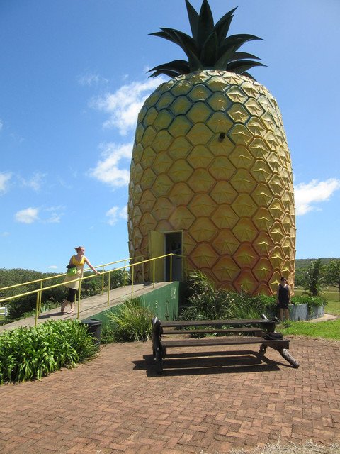 30-pineapple-house-for-sale