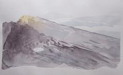 nimeton-2011, 47 x 28 cm