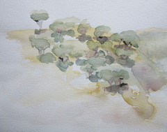 segovia-2011-33-x-26-cm