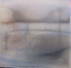 petovesikirppu, 48 x 48 cm