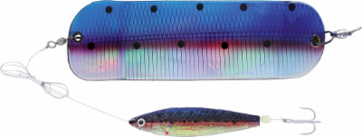 20cm_flasher_with_softfish_lure_black_shiner_060mm_1.png&width=400&height=500