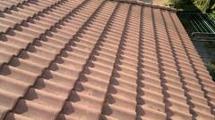 harjattu katto