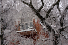 talvenvaripilkku5