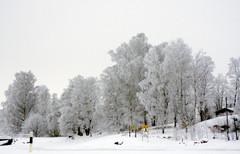 talvenvaripilkku7