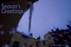 joulukortti2012_eng