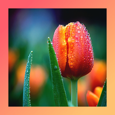 FRESH-UP_tulip.png&width=400&height=500