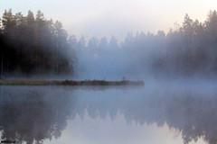 Pilkotunjärvi