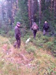 Metsään mars! Aamupäivän treeniä. (kuva PKK)