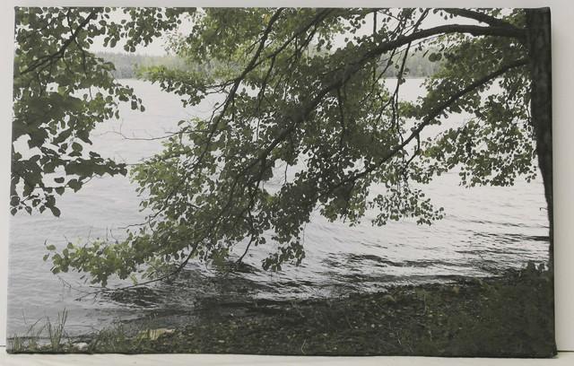 Liesjärven rantaa, 48 €