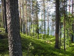 karjalanmatka2006-7