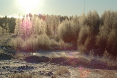 hauholla aamulla -20 astetta