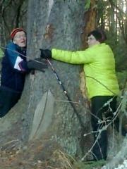 Raimo ja Sisko halaavat Summassaaren vanhinta puuta ja toivovat3.11.2015