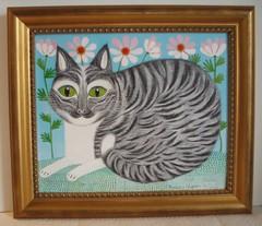 Helmi,harmaaraitainen kissa