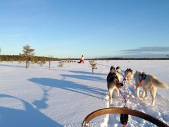 blue sky and bright white snow