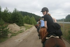 Moottoritien vierustaa (Aina ja Edi) Moottoritien lisäksi reitin varrella oli junarataa, lehmii yms., mutta upeat hevoset käyttäytyivät mallikelpoisesti :)