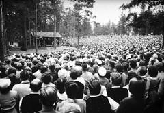 Täysi katsomo Kivi-juhlilla 50-luvulla