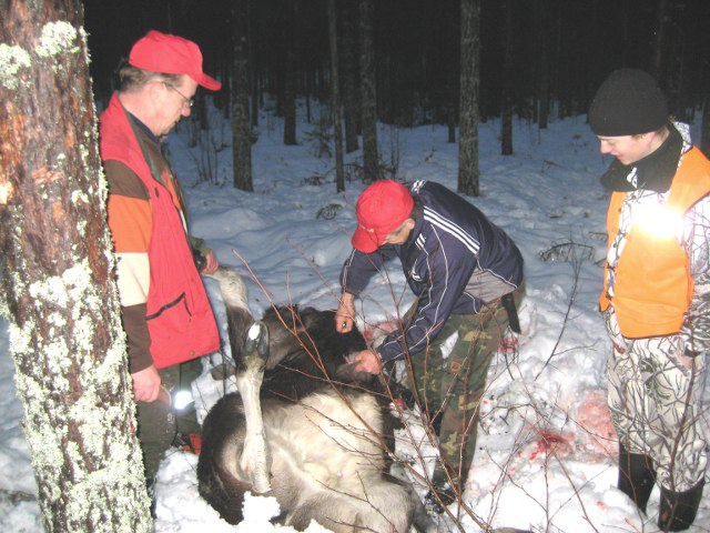 hunt016