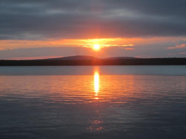Tirronleiri 1-7.7.2013