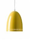 dynamo_curry.jpg&width=140&height=250&id=149327&hash=c54aff02fb0558a0e5e9ee47c8e07fa5
