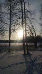 kuva_saynaniemesta_6