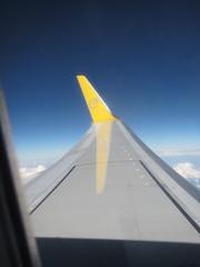 Lentsikka