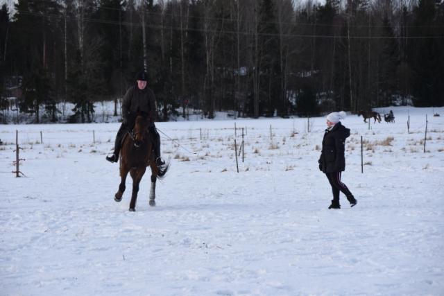 Karita valmentaa Viiviä ja Hipeä