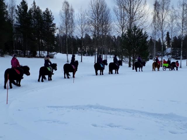 Ihana ponijoukko ratsastajineen