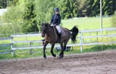 Nelli ja Esko valmennuksessa
