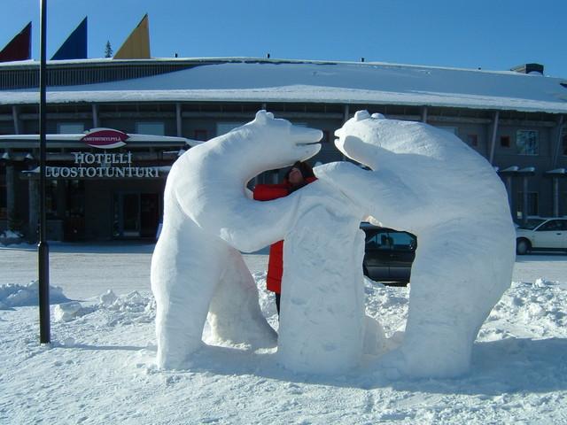 Hotelli Luostotunturin karhut