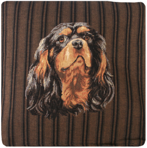 spaniel1.png&width=400&height=500