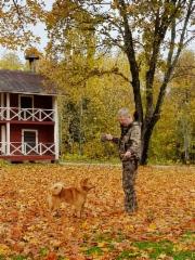 Timo Montonen ja Jahtitaigan Vekku, haukkuotteluun