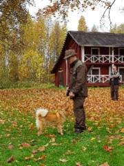 Sauli Halttunen ja Karhakan Eka-Essi. Ottelun voittaja, haukkuotteluun.
