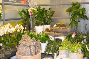 Kukkakauppa rovaniemi citymarket